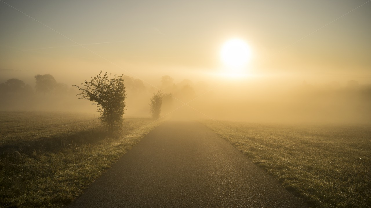 Morgennebel - Hochnebel