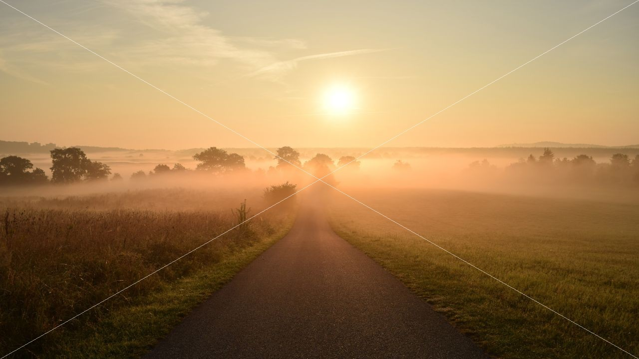 Morgennebel über der Insel Rügen